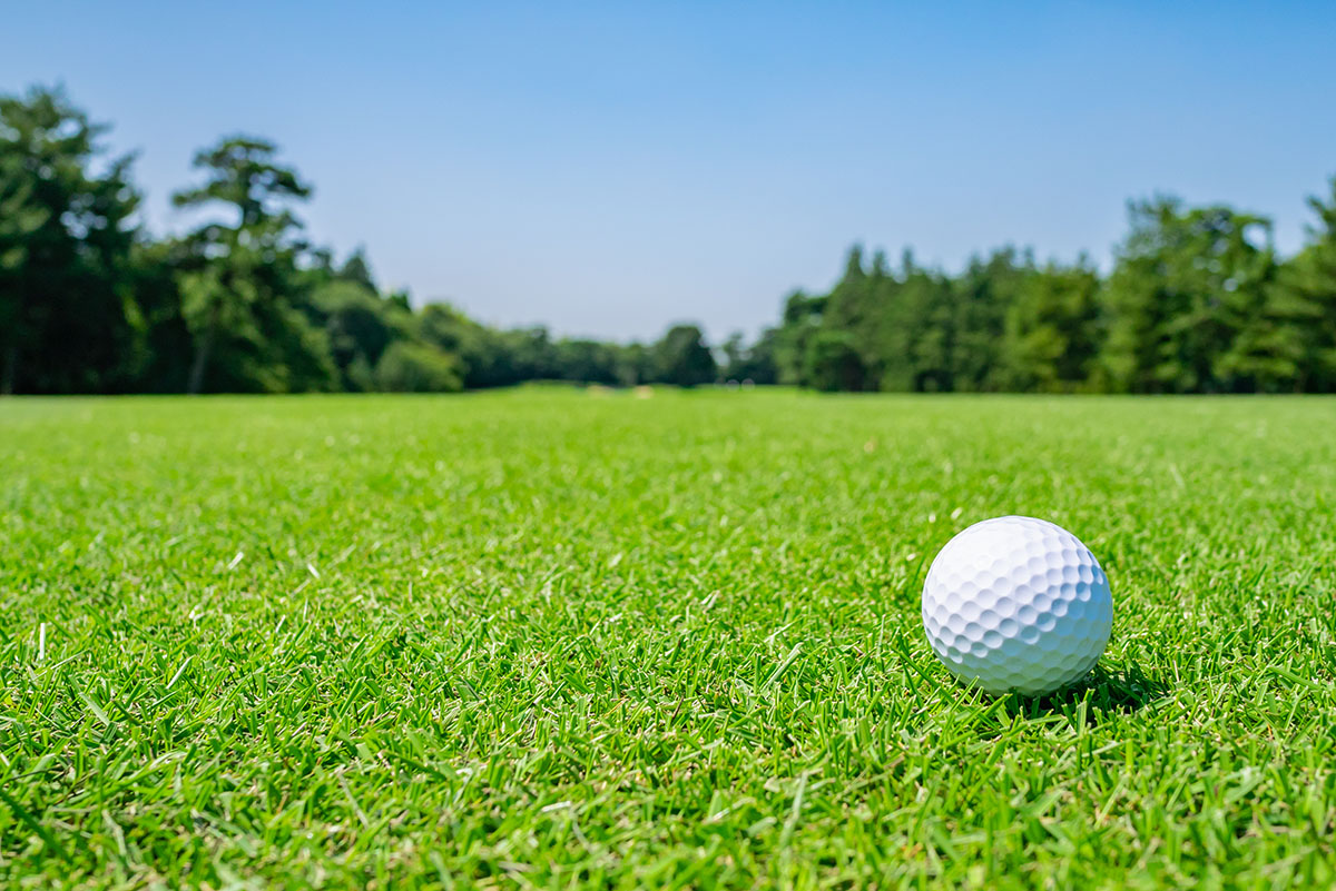 Golf Course where the turf is beautiful and Golf Ball on fairway. Golf course with a rich green turf beautiful scenery.